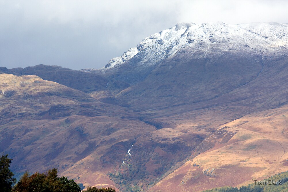 Ben Lomond by Tom Clark