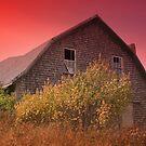 Red Sky Barn by Gene Cyr