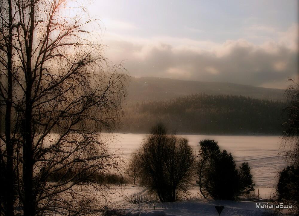 Snowy Morning by MarianaEwa