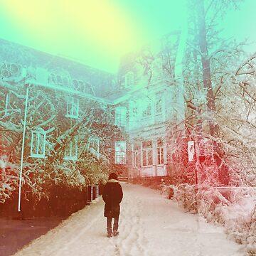 winter walk by debschmill