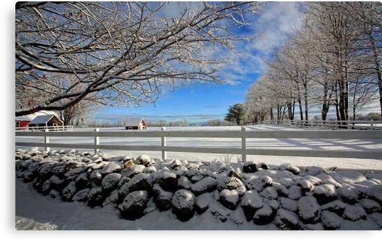 Maine Snow Scene by T.J. Martin