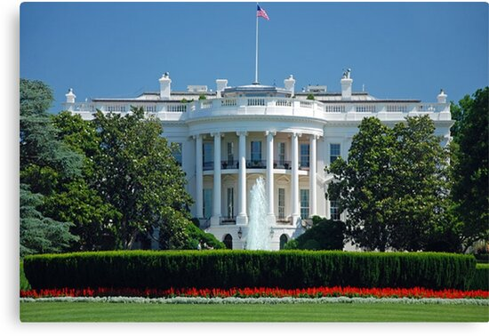 The White House, Washington by BeeJayBee