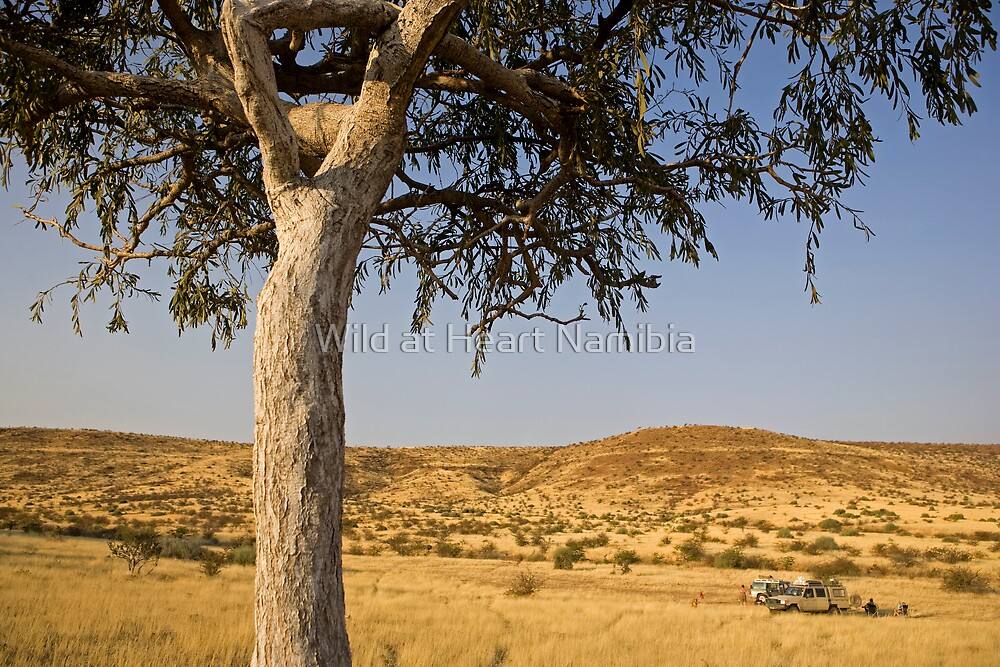 Camping out in Damaraland by Wild at Heart Namibia