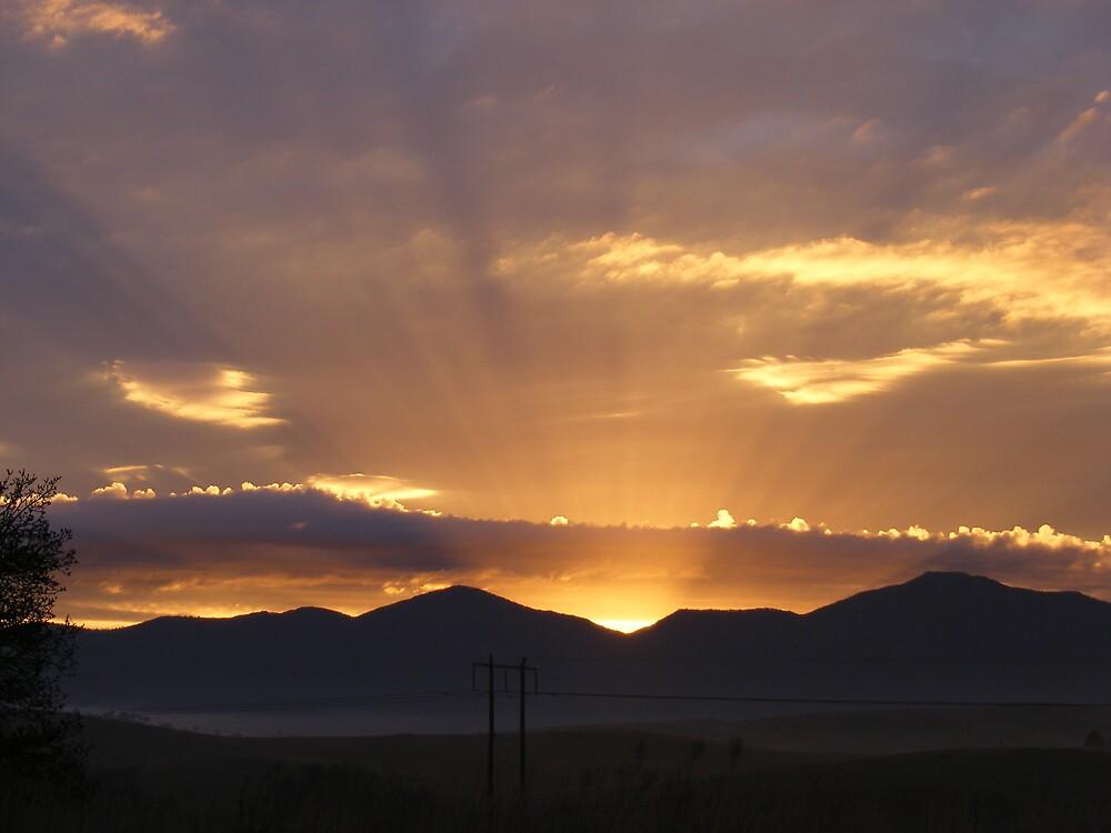 Mums sunrise by dustangel