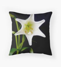 White Lily in bloom Throw Pillow