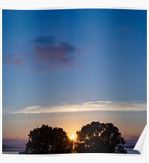 Sunset Between Trees Poster
