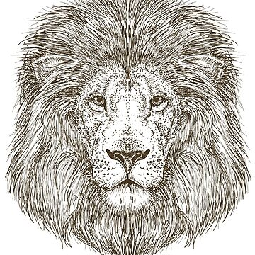 Lion Face b&w drawing by CasualMood