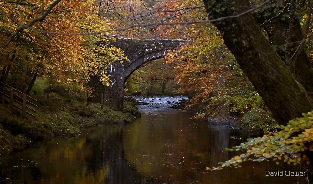 autumn bridge  by David Clewer