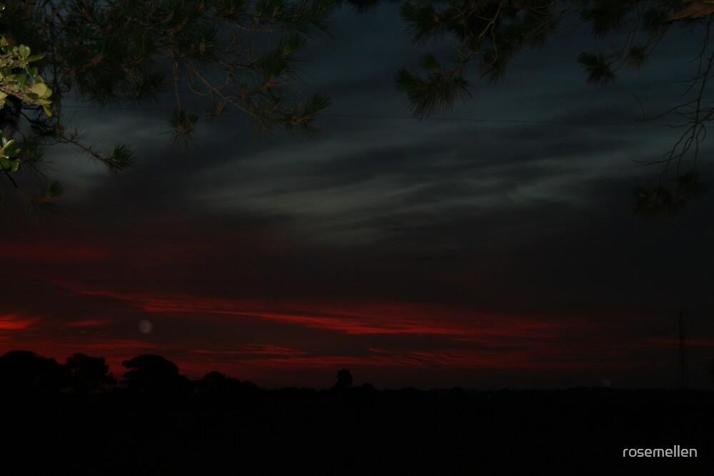 sunset over Millicent Flats by rosemellen