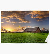 Shed meadow Poster