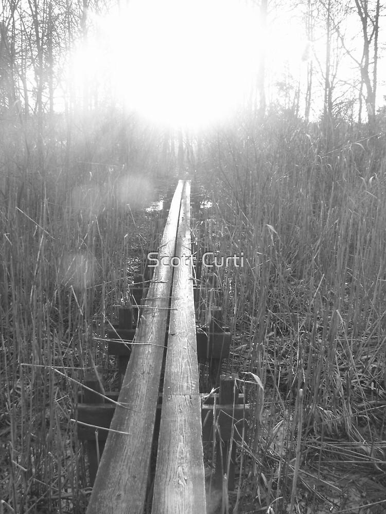 walk a thin line by Scott Curti