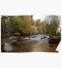 River Dart, on Dartmoor Poster