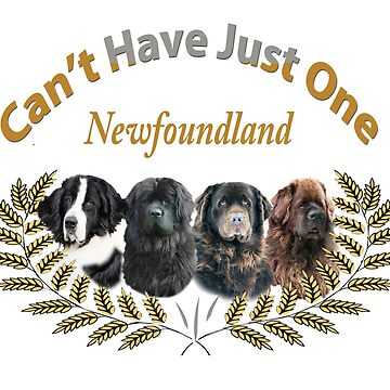 Newfoundland Cannot Have Just One by Friskybizpets