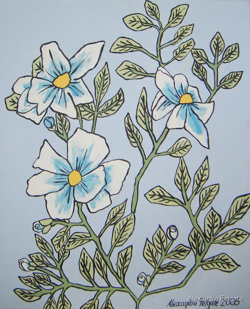 Blue Poppies by Alexandra Felgate