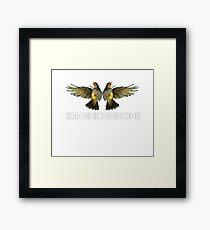 Two Birds One Stone Framed Print