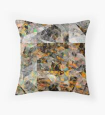 Stop Drop And Roll Throw Pillow