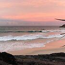 Sunset at Cabarita by Annie Smit