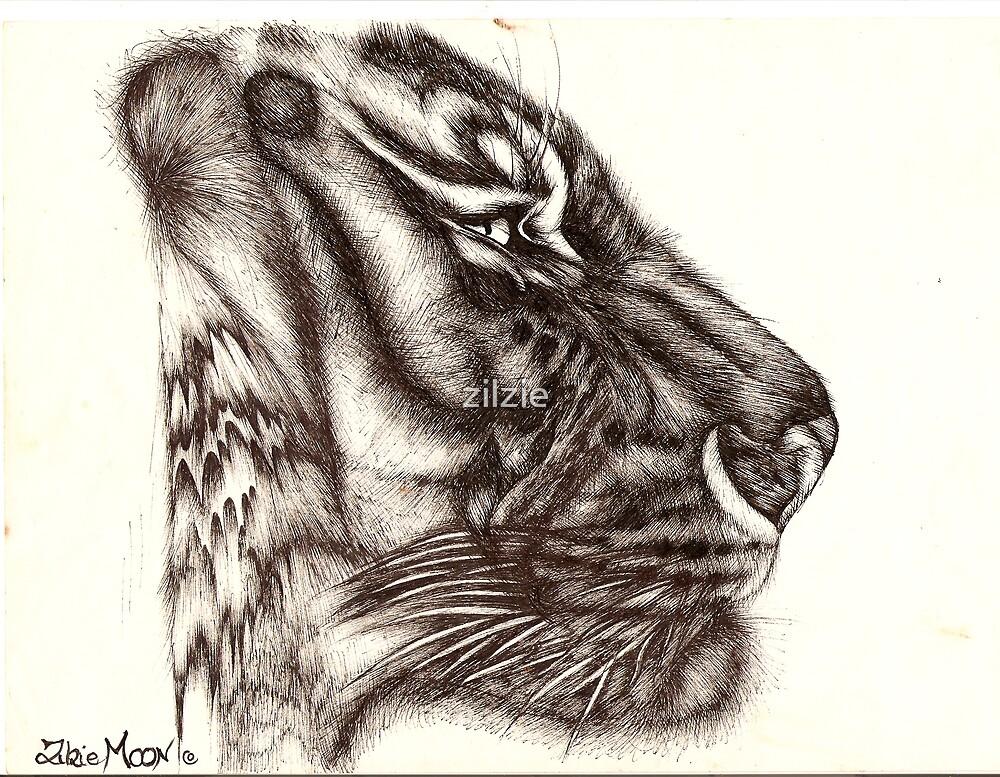 siberian tiger by zilzie