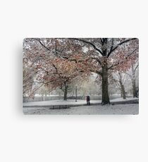 First snow of the season. Boston Garden Canvas Print