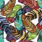 Boho Feathers on Black by Cherie Balowski