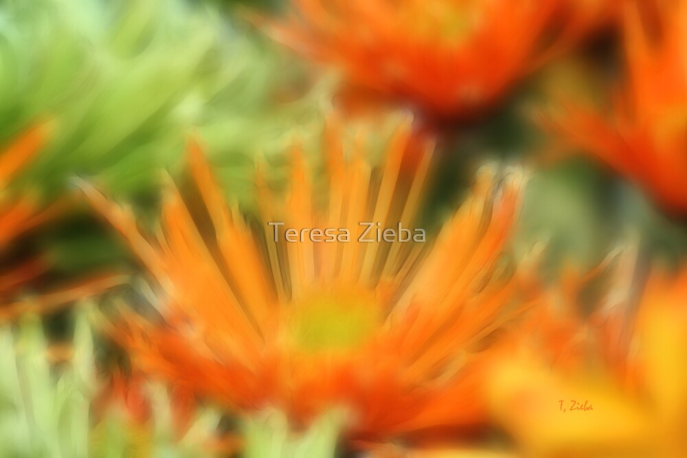 Floral Abstract by Teresa Zieba