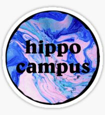 hippo campus tie dye/marble Sticker