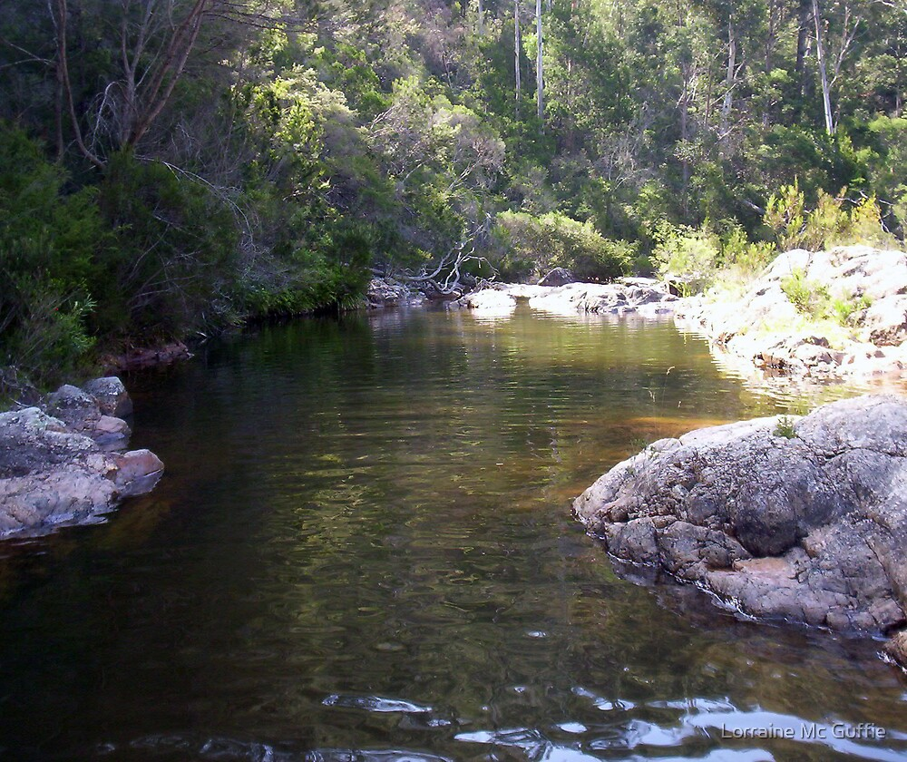 Tranquil Waters by Lorraine Mc Guffie