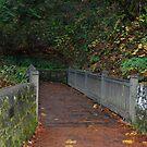 Wooden Footbridge by Cheryl  Lunde
