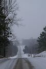 A Canadian Country Road in Winter by Larry Llewellyn