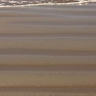 Linear Functions - Nature's Contribution in Sand by Buckwhite