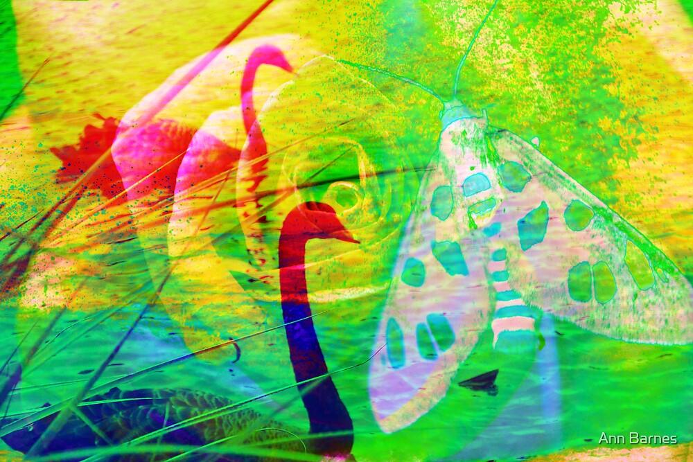 Butterfly Art #6 by Ann Barnes