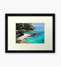 Tropical Zone Framed Print