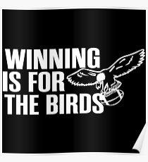 Winning Is For the Birds Philavania Philadelphia Eagles Poster