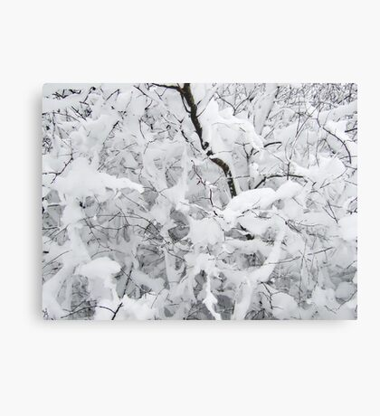 White silence Metal Print
