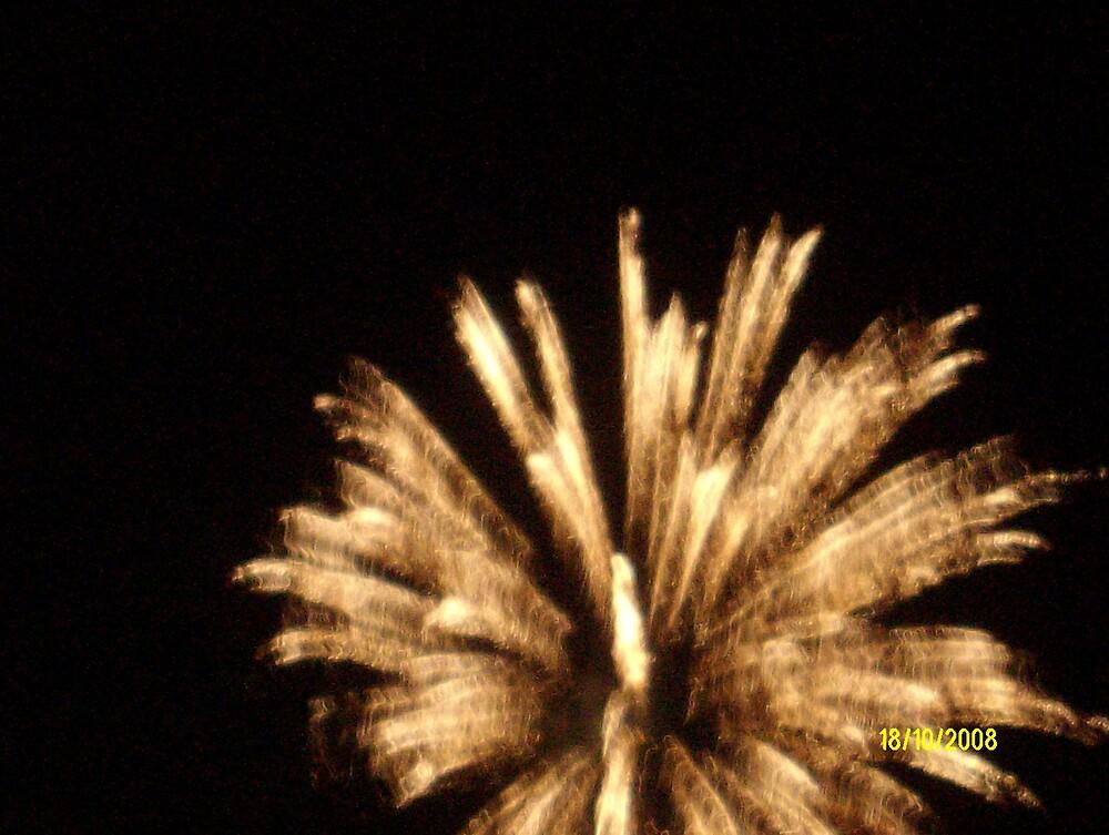 fireworks!!! by tigerboy9