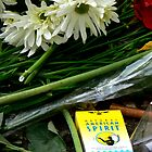 American Spirit - Jim Morrison's grave by outsider