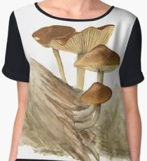 Agaricales sp. 02 Chiffon Top