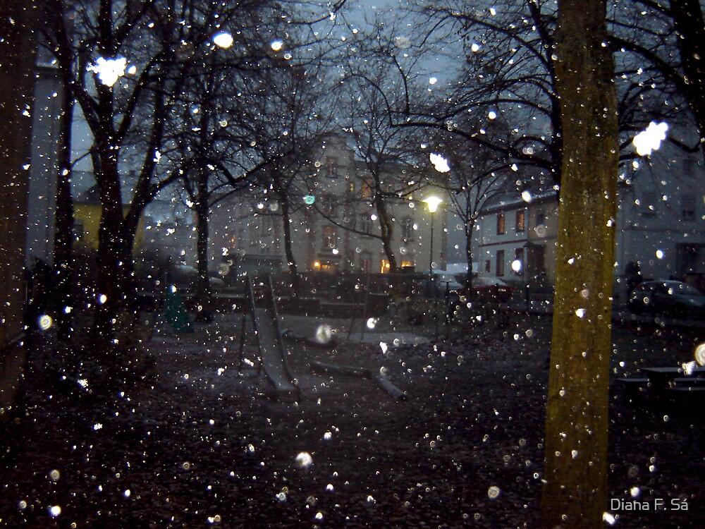 Snowing days by Diana F. Sá