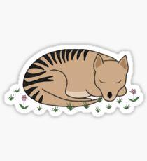 Thylacine Sleeping Sticker
