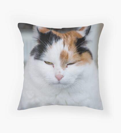 I'm Not Grumpy Throw Pillow