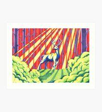 The Rainbow Forest Art Print