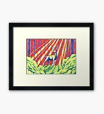 The Rainbow Forest Framed Print