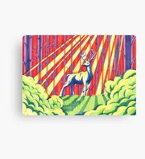 The Rainbow Forest Canvas Print