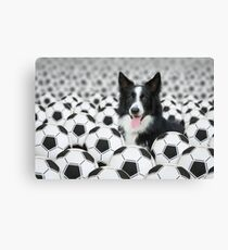 Canine Camouflage Canvas Print