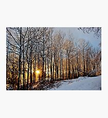 Shimmering Icy Sunset Photographic Print
