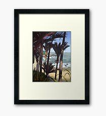 Majestic New Zealand Nikau Palms Framed Print
