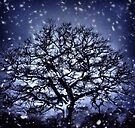 Dark snowy skies by missmoneypenny