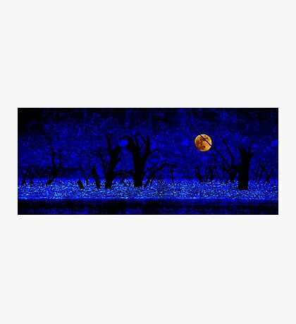Under the Full Moon, the Dead Trees Dance (in Blue) Photographic Print