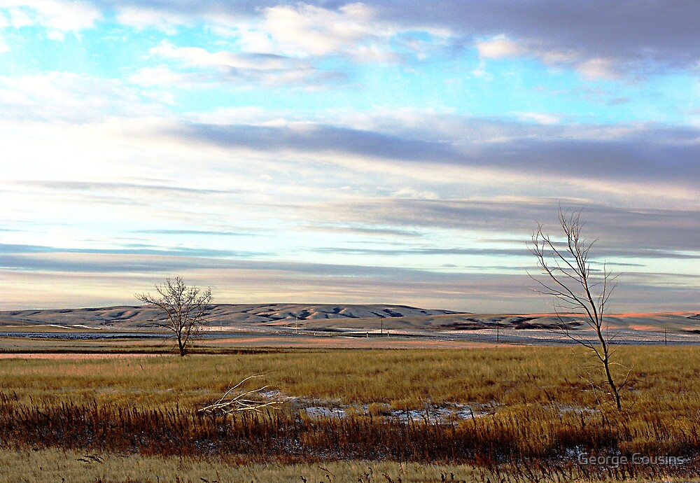The Prairies (1) by George Cousins
