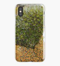 Purbeck National Trust iPhone Case/Skin